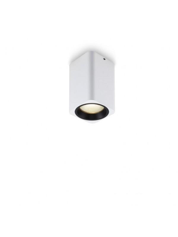 Spot Aplicat  Downlight  JLBL210